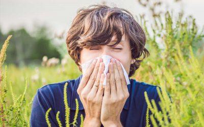 Allergiezeit