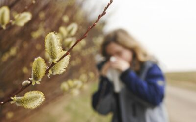 Kein Frühling ohne Pollen